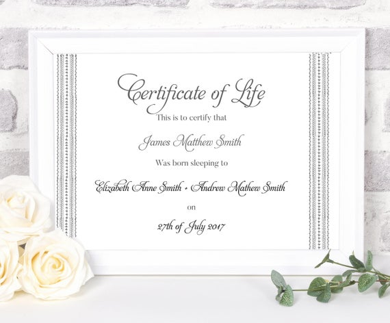 Baby Death Certificate Template 2
