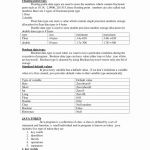 1st Grade Book Report Template New First Grade Spelling Test Template Lovely Spelling Word Paper