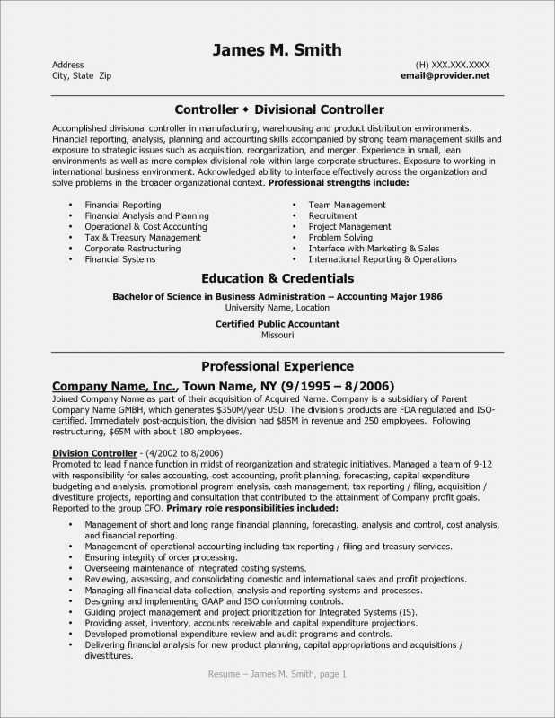 Annual Report Template Word Professional Resume Examples For Corporate Jobs Beautiful Gallery Cfo Resume
