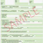 Basketball Camp Certificate Template Unique software License Certificate Template Word Certificatetemplateword Com