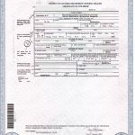Birth Certificate Translation Template Unique Birth Certificate Nyc Same Day New Italian Birth Certificate