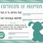Blank Adoption Certificate Template New Birth Certificate Downtown Undecomposable toy Adoption Certificate