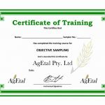 Boot Camp Certificate Template Awesome Certificate Of Training Template Word Inspirational Free Course