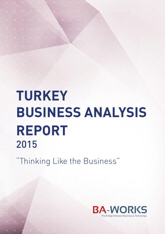 Business Analyst Report Template Unique 22 Business Report Format Examples Pdf Doc Pages Examples