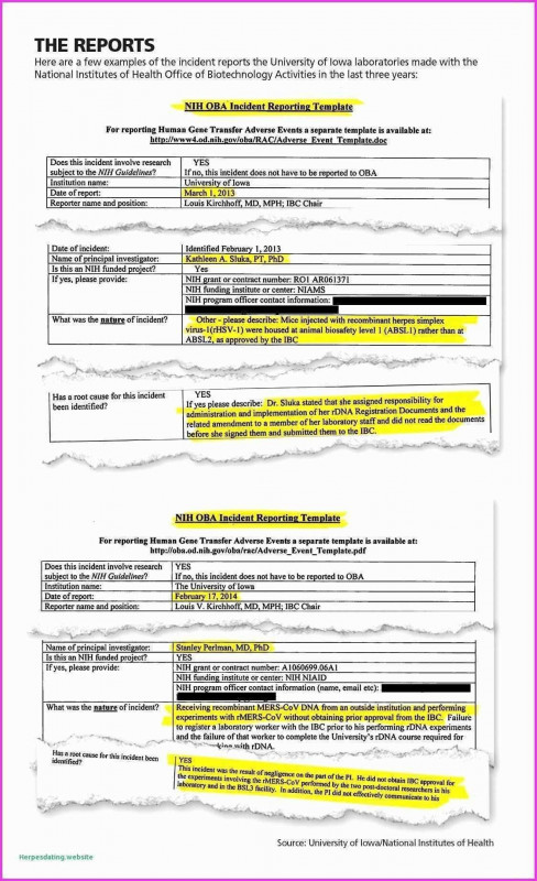 Business Quarterly Report Template New 20 Business Trip Report Template Pdf Valid 20 Business Quarterly