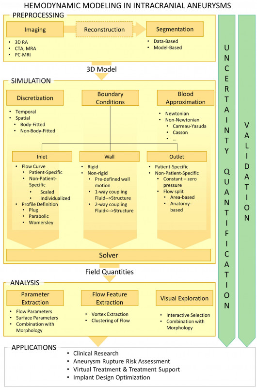 Carotid Ultrasound Report Template New A Review On The Reliability Of Hemodynamic Modeling In Intracranial