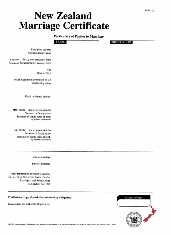 Case Report form Template Clinical Trials Awesome Apply for A Divorce On Your Own New Zealand Ministry Of Justice