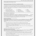 Certificate Of Analysis Template Awesome Short Resume Examples Pdf Awesome Photography Swot Analysis Template