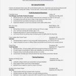 Certificate Of ordination Template New Resume Layout Examples Professional 1 Page Resume Templates Fresh