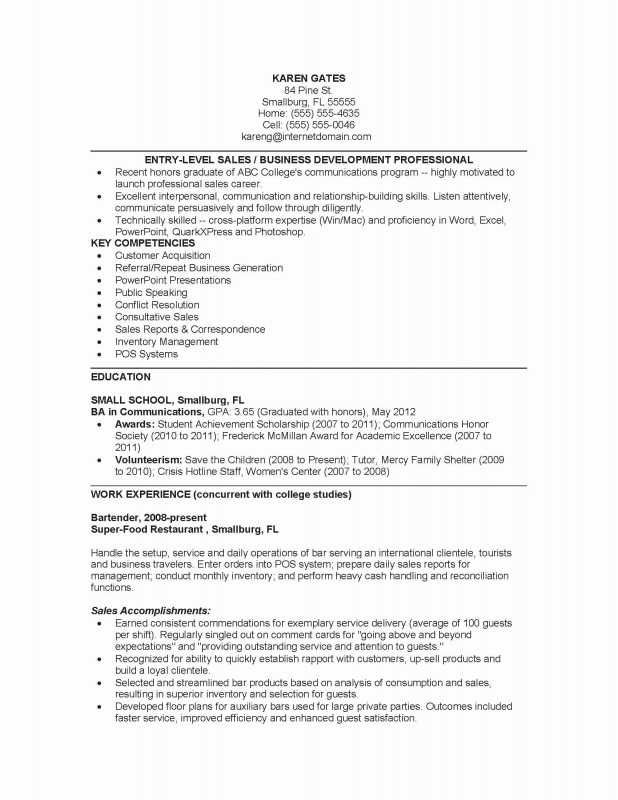 Daily Activity Report Template Unique Dog Groomer Resume Collections Of Dod Resume Best Dod Statement Work