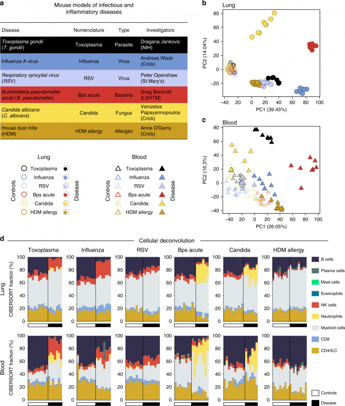 Data Quality assessment Report Template Unique Transcriptional Profiling Unveils Type I and Ii Interferon Networks
