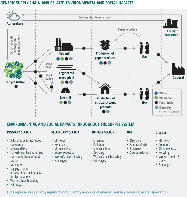 Environmental Impact Report Template Awesome Have forests Been Sustainably Managed