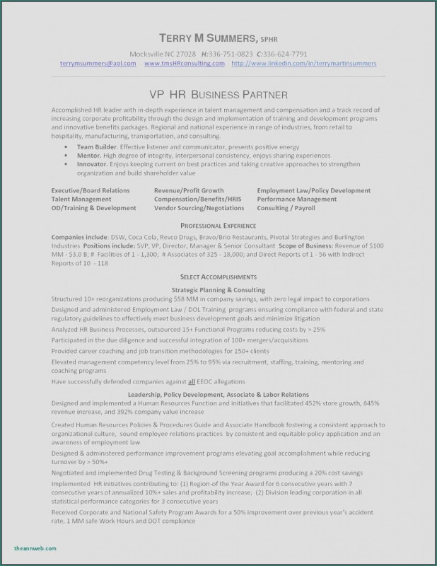 Hr Management Report Template New Resume Sample Vp Business Development New Sample Resume Business