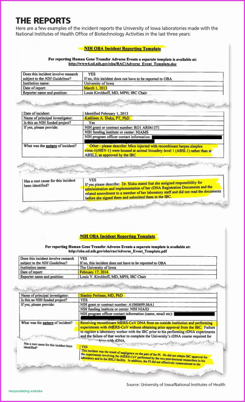 Implementation Report Template New Sample Resume For Government Auditor Beautiful Collection Government