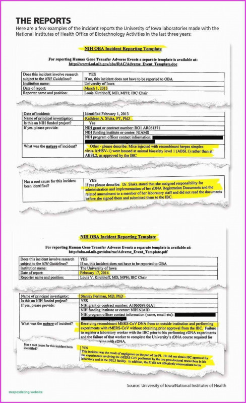 Information Security Report Template New Network Security Policy Statement Then 004 Nih Resume Format