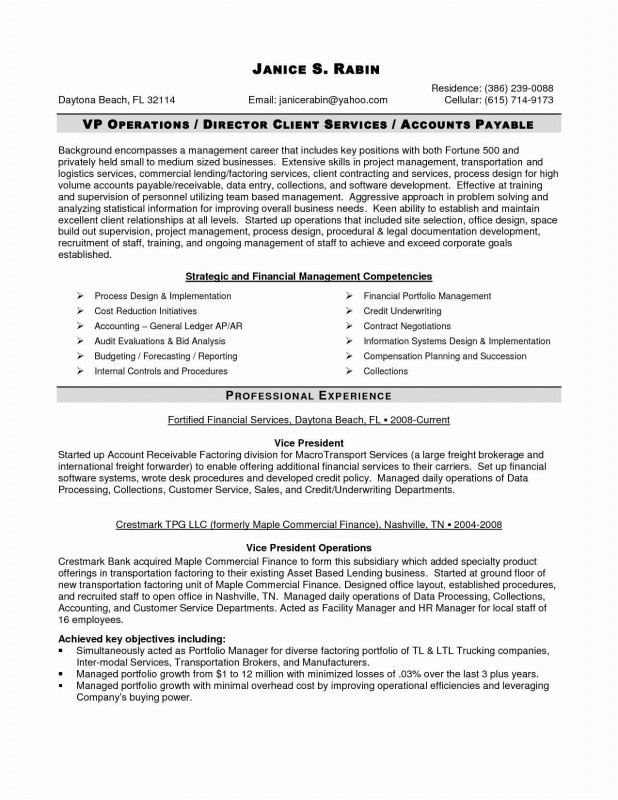 Information System Audit Report Template Awesome Awesome Examples Curriculum Vitae Template Www Pantry Magic Com