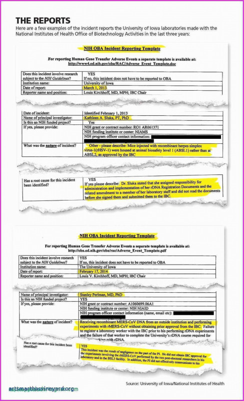 Ir Report Template Awesome 006 Art Gallery Business Plan Example Ampad Card Templates Valid