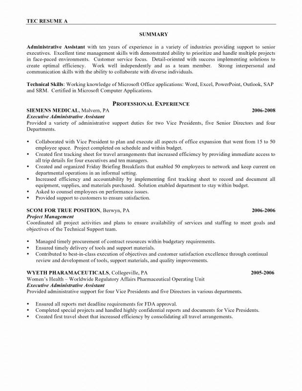 It Report Template for Word Awesome Resume for It Job Inspirational Resume Template Samples Nanny Resume