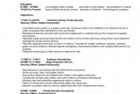 Job Progress Report Template Professional Professional Resume Builder Sample Resume Summary Generator Unique