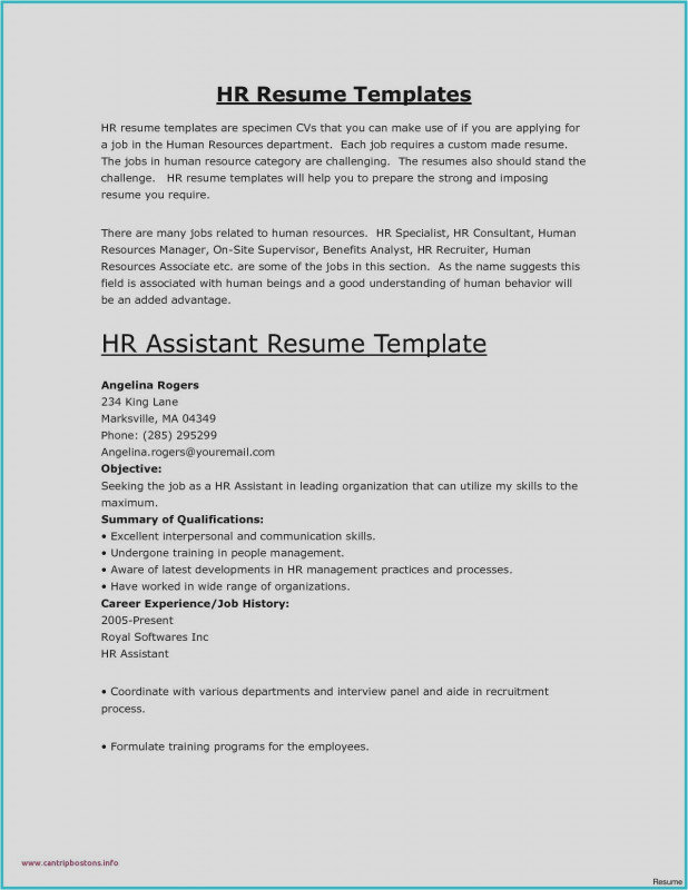 Network Analysis Report Template Unique New Example Of Qualifications And Skills For Resume Atclgrain