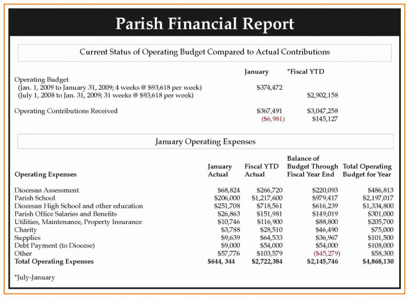 Non Profit Monthly Financial Report Template New Non Profit Financial Statement Template Excel then Monthly Financial