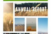 Nonprofit Annual Report Template Professional Free Non Profit Annual Report Template Elegant Design Free Annual