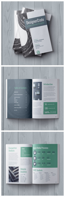 One Page Book Report Template Unique 19 Consulting Report Templates that Every Consultant Needs Venngage