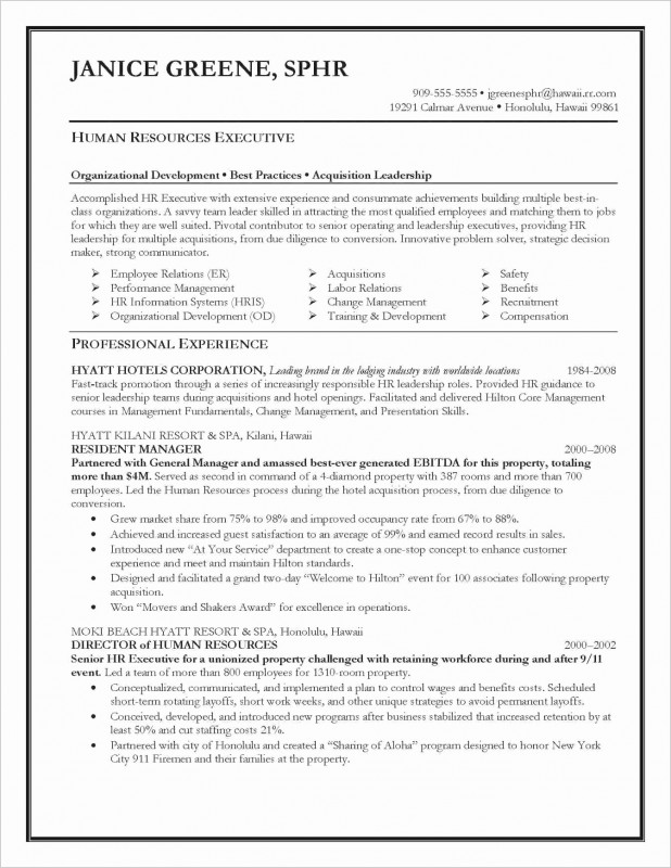 One Page Book Report Template Unique One Page Executive Summary Example New 55 Summary Qualifications