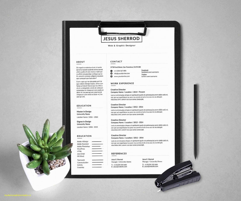 One Page Status Report Template Unique Project Management Report Template Ghabon org
