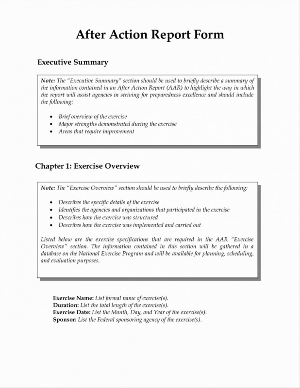Portfolio Management Reporting Templates Professional 016 Portfolio Management Reporting Templates for New after Action