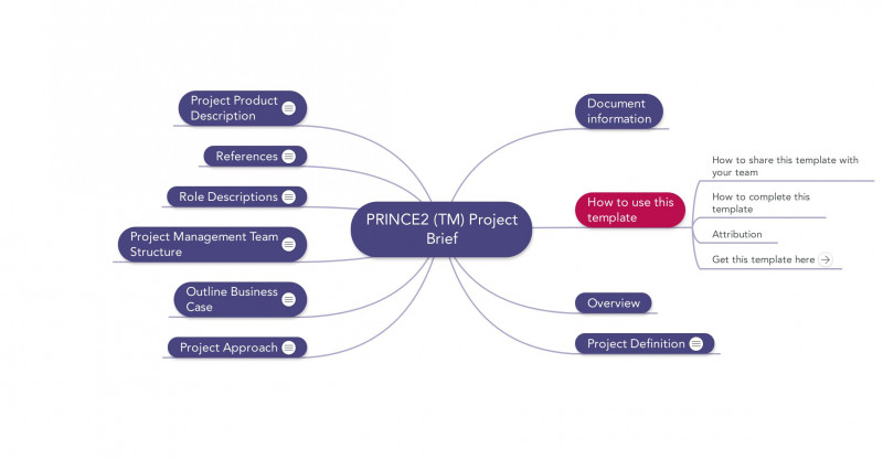 Prince2 Lessons Learned Report Template Professional Project Debrief Template toha
