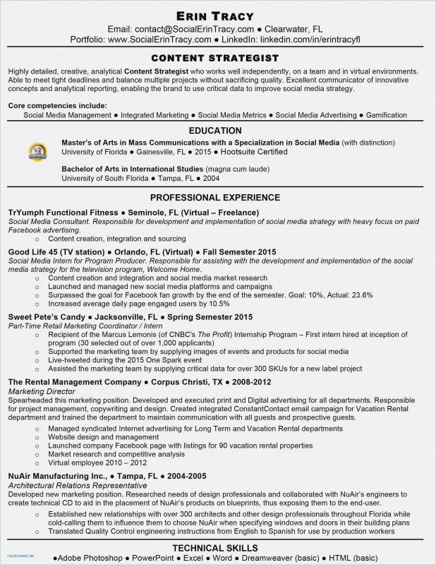 Progress Report Template Doc Unique Resume Template Docs Salumguilher Me