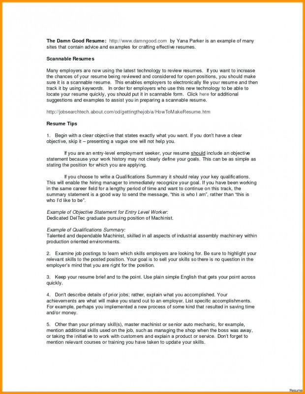 Project Daily Status Report Template Professional Project Management Capability Statement Vinylskivoritusental Se