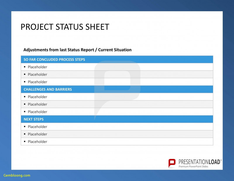 Project Manager Status Report Template Awesome Free Project Management Status Report Template Cel Goal Smorad