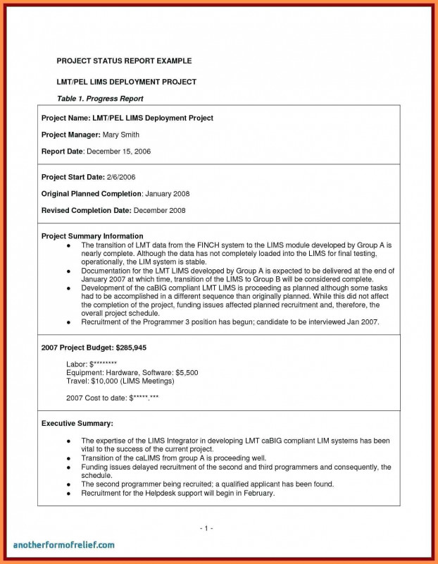 Project Manager Status Report Template Professional Final Project Report Template Redhatsheet Co