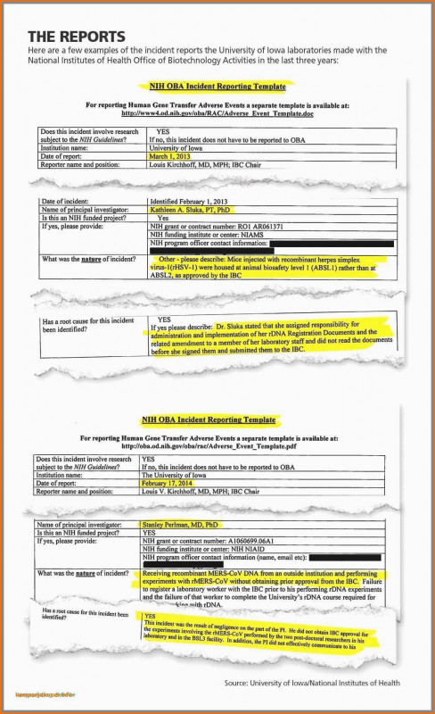 Project Report Template Latex Professional 14 Bewerbermanagement Excel Vorlage Kostenlos