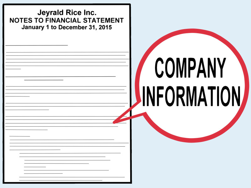Sales Rep Visit Report Template New How To Write A Financial Report With Pictures Wikihow