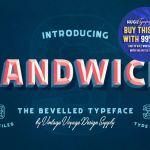 Sandwich Book Report Template