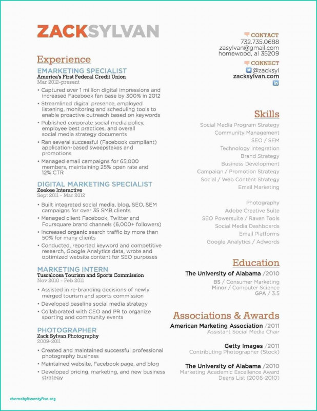 Seo Report Template Download Awesome Resume for Digital Marketing Valid Seo Resume Sample Download New