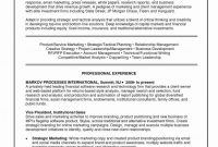 Seo Report Template Download Professional Skills Based Resume Template Salumguilher Me