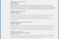 Service Review Report Template Professional Microsoft Word Resume Template 2010 Salumguilher Me
