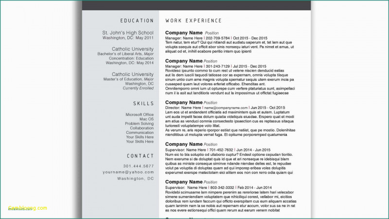 Site Visit Report Template Free Download Awesome 023 Microsoft Word Templates Free Download Professional Resume with