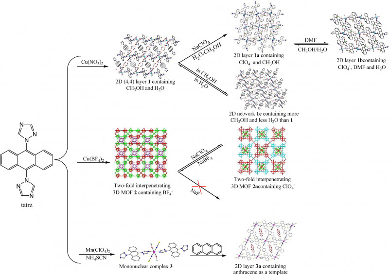 Skeleton Book Report Template New Anion Exchange And Anthracene Encapsulation Within Copperii And
