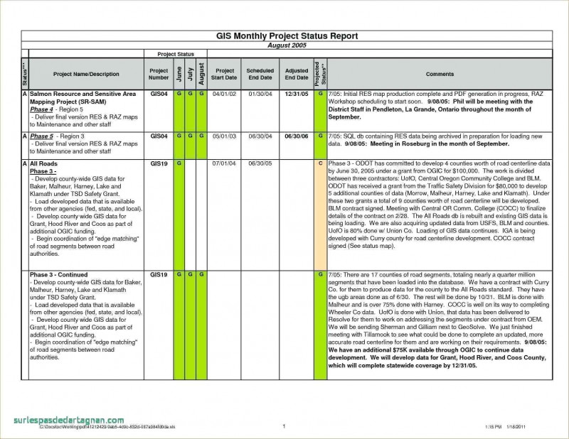 Stoplight Report Template New Qa Status Report Template Excel Pm T Report Template