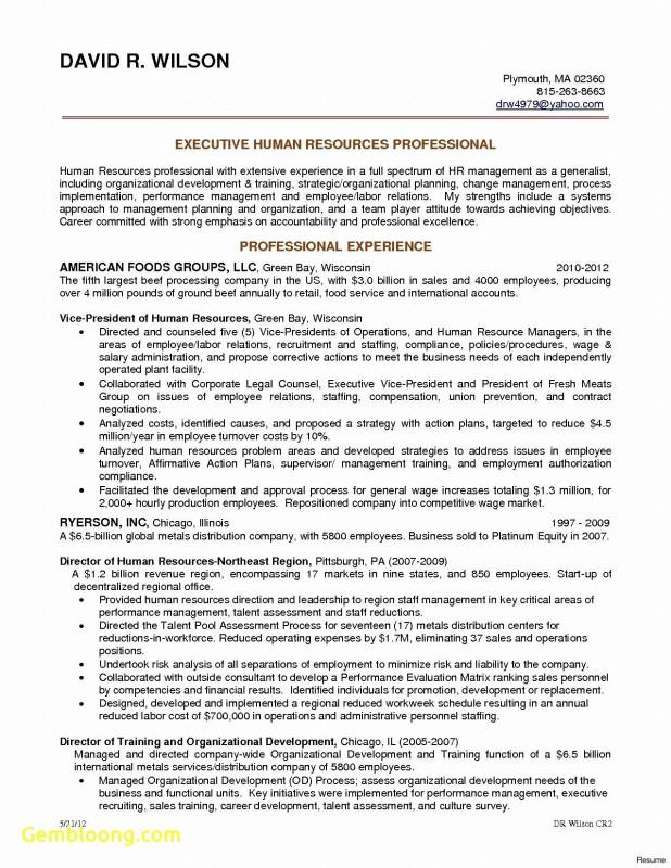 Strategic Analysis Report Template Professional International Marketing Plan Template New Public Relations