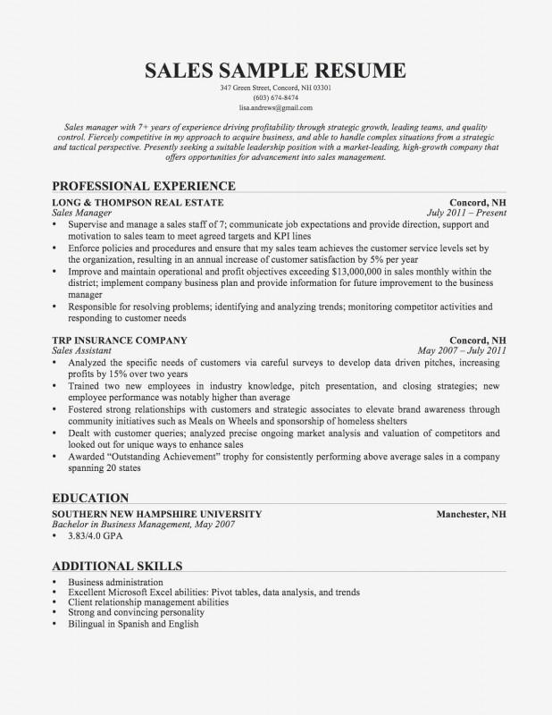 Strategic Analysis Report Template Unique format Of Resume Template Salumguilher Me