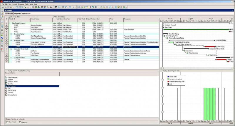Technical Support Report Template Unique Status Report Template New Status Update Template Project Report
