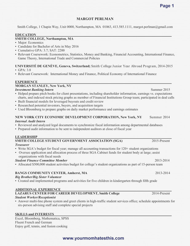 Template For Audit Report New Lovely Audit Manager Resume Atclgrain