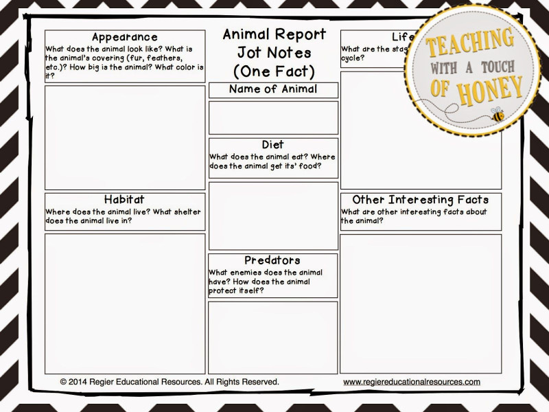 Template For Information Report New The Best Of Teacher Entrepreneurs Iii Writing Lesson Animal