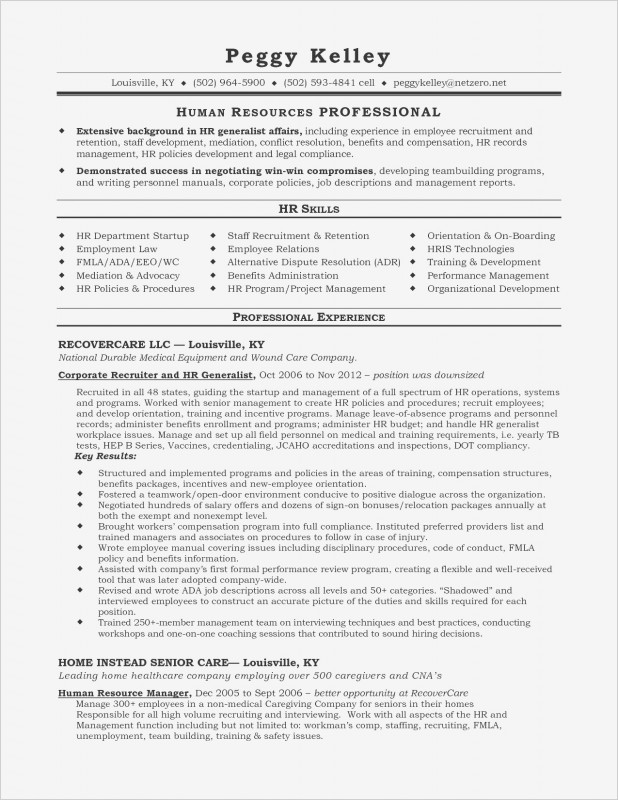 Template For Summary Report New Resume Sample Scholarship Valid Create A Resume New Write Resume New